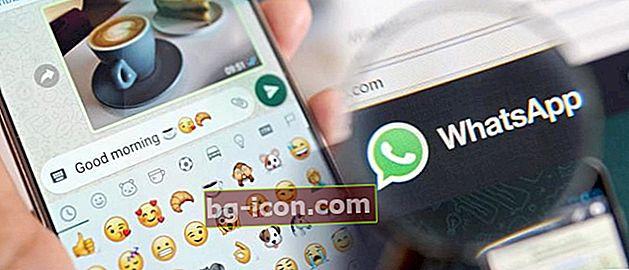 Hur man inte ses online på WhatsApp kommer ingen att veta!