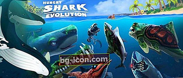 10 divertidos y divertidos juegos de peces en el móvil | ¡Tenga un acuario gratis!