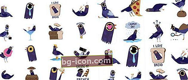 Detta är Purple Bird Sticker som är återigen dum på Facebook